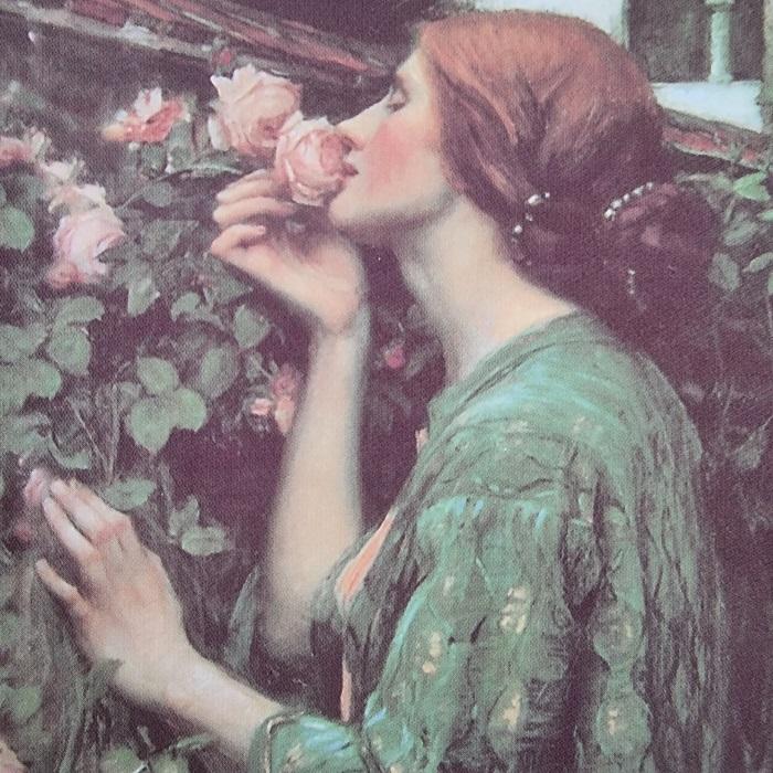 megavimasis, sugebejimas, momentas, momentu, dovana, rozes, roze, meiles angelu kortos, meiles kortos, kortos, angelu kortos, meilė korta, angelai, bureja, burejos, magija, kerai, taro,