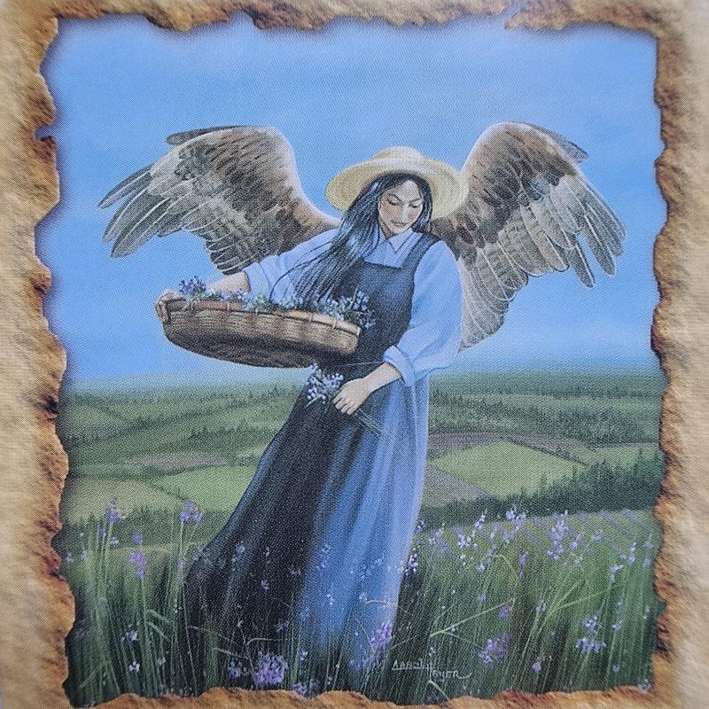 bazine cakra, cakra, zeme, sodinimu, auginimu, sveikatos angelu kortos, angelu sveikatos kortos, angelu kortos, kortos, gydantis orakulas, gydancios kortos, karmos korekcija, ciakru apvalymas, gydantis angelu orakulas, bureja, taro, burimai, magija, burtai, angelai