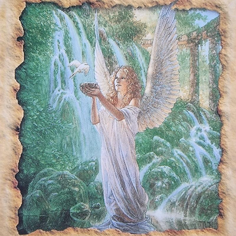 dievo, gausybes ragas, taure, gausybes taure, sveikatos angelu kortos, angelu sveikatos kortos, angelu kortos, kortos, gydantis orakulas, gydancios kortos, karmos korekcija, ciakru apvalymas, gydantis angelu orakulas, bureja, taro, burimai, magija, burtai, angelai