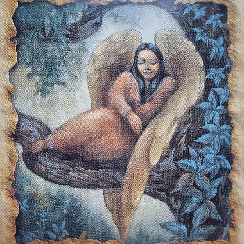 emocionalumas, emocijos, isgyvenimai, jautrumas, sveikatos angelu kortos, angelu sveikatos kortos, angelu kortos, kortos, gydantis orakulas, gydancios kortos, karmos korekcija, ciakru apvalymas, gydantis angelu orakulas, bureja, taro, burimai, magija, burtai, angelai