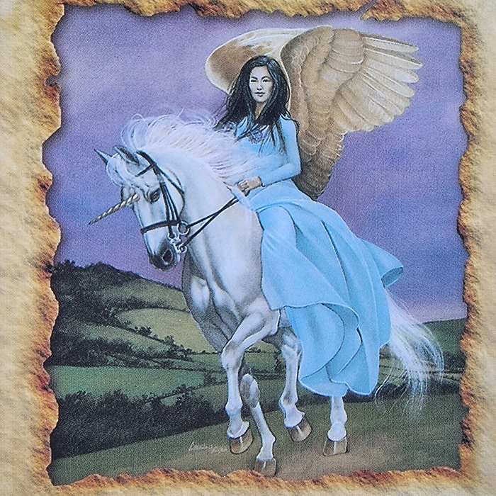 gyvuno dvasia, dvasia, gyvunas, arklys, vienaragis,sveikatos angelu kortos, angelu sveikatos kortos, angelu kortos, kortos, gydantis orakulas, gydancios kortos, karmos korekcija, ciakru apvalymas, gydantis angelu orakulas, bureja, taro, burimai, magija, burtai, angelai