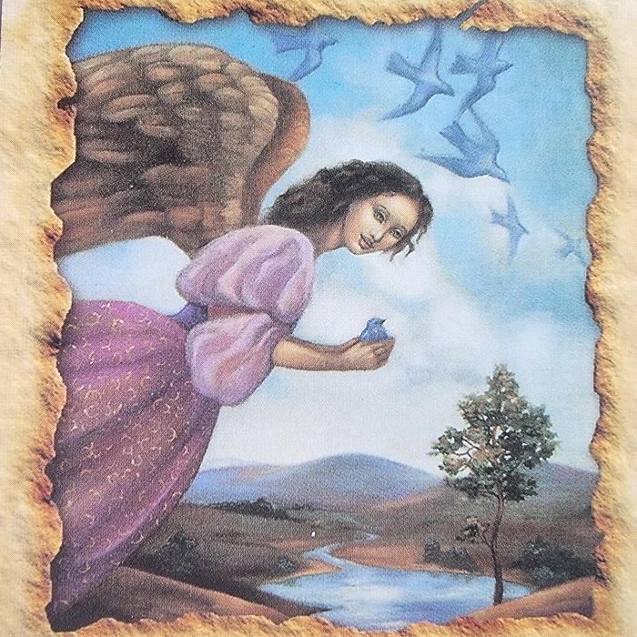 sparnai, erdve, praeiti, sveikatos angelu kortos, angelu sveikatos kortos, angelu kortos, kortos, gydantis orakulas, gydancios kortos, karmos korekcija, ciakru apvalymas, gydantis angelu orakulas, bureja, taro, burimai, magija, burtai, angelai