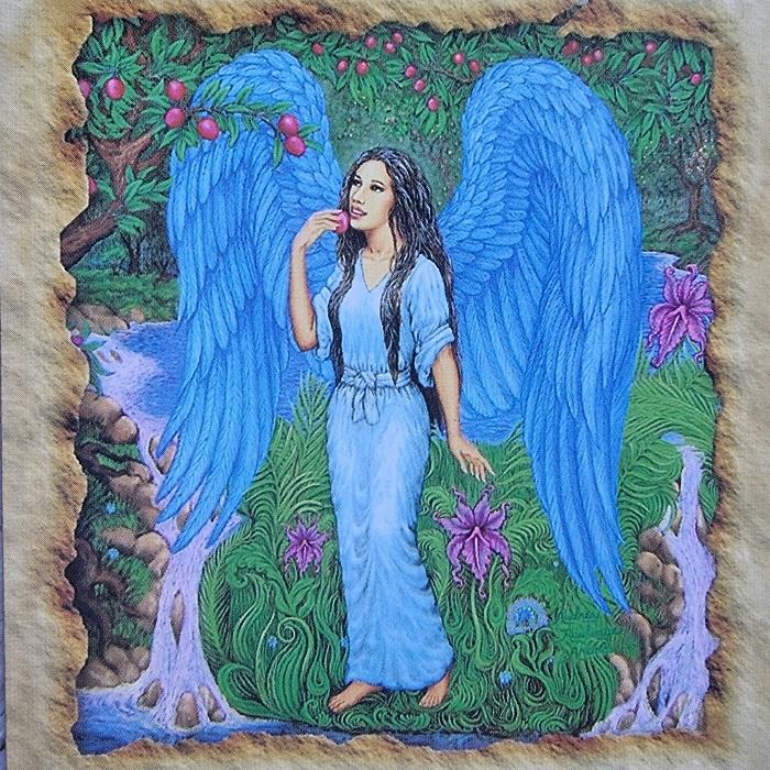 vizualizacija, vizualizacijos, meno deka, vizualinio meno, sveikatos angelu kortos, angelu sveikatos kortos, angelu kortos, kortos, gydantis orakulas, gydancios kortos, karmos korekcija, ciakru apvalymas, gydantis angelu orakulas, bureja, taro, burimai, magija, burtai, angelai